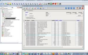 Multiplo Software Gestion Carga de Camiones y expediciones en Distribucion y Ferreteria